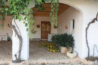 Mahón – Menorca VELL/VIEJO DOP Meloussa
