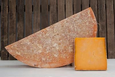 RED LEICESTER SPARKENHOE