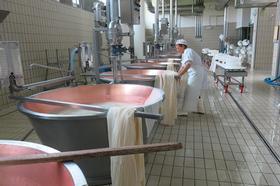 Nueva quesería en Montecoppe: El reto conseguido.